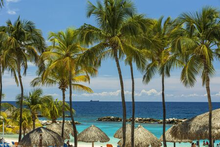 Beautiful view of white sand Curacao beach. Green palm trees and plants on coast line. Amazing turquoise water and endless skyline. Curacao island. Gorgeous nature landscape background. Banco de Imagens