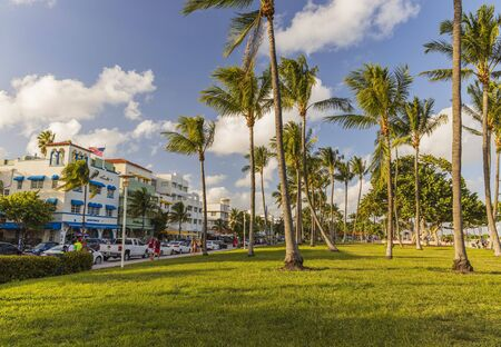 Beautiful landscape view of Miami South Beach. Buildings on one side and palm trees on another side. Blue sky and white clouds on background.USA. Miami 09232019. 에디토리얼