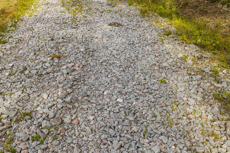 Close up view of gravel road in forest. natural landscape view.