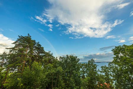 View of tops of green trees on blue sky with a rainbow after rain on background Baltic sea. Sweden. Stok Fotoğraf