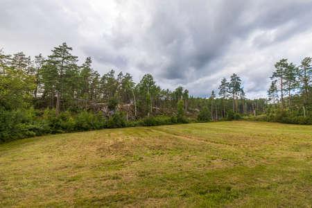 Beautiful summer nature landscape view. Green grass field on front nature landscape view on rocky ground. Sweden. Stok Fotoğraf
