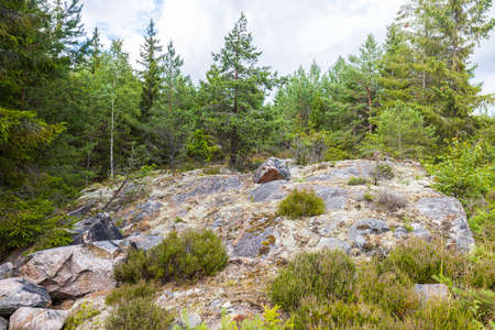 Beautiful nature landscape view on rocky ground. Sweden.