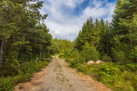 Beautiful nature landscape view. Road barrier on gravel road. Green trees and blue sky with white clouds background. Sweden.