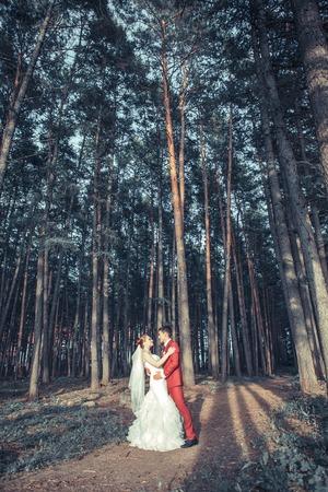 ni�os vistiendose: Novia y el novio en la boda