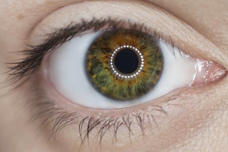 eye green: mujer de ojos verdes close-up Foto de archivo