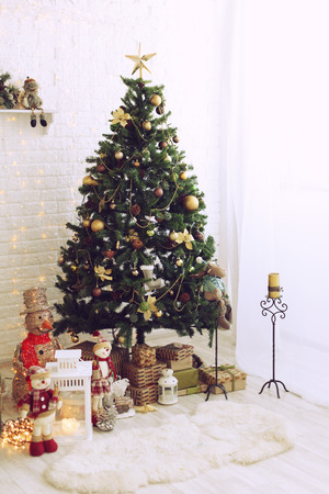 trees photography: Christmas gifts under christmas tree in the sunny morning. Stock Photo