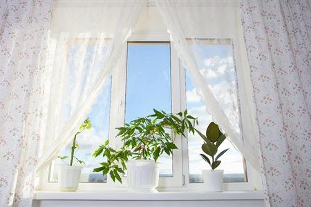 Bild von Fenster und Vorhang im Zimmer Standard-Bild - 36758983