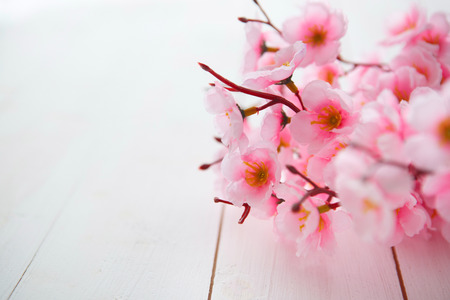 background the nature: Spring Blossom flowers over clear wood background.
