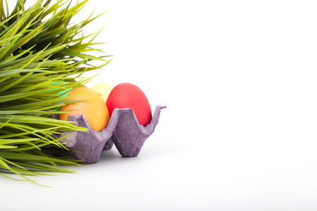 Easter eggs with grass photo
