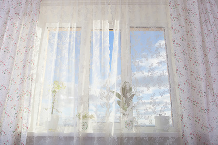 using senses: Curtain Window with plants Stock Photo
