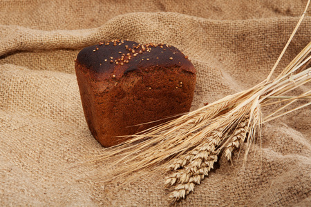 brown bread: close up of brown bread