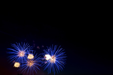 sparklet: Brightly colorful fireworks and salute of various colors in the night sky