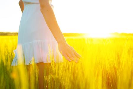 initial: Woman hand touching wheat ear in wheat field, sunset light