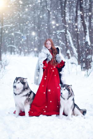 Beautiful girl in sheepskin coat with the dogs. The girl with the siberian husky or wolf or Malamute. Fairy tale girl embracing cute dog in winter park. Christmas.