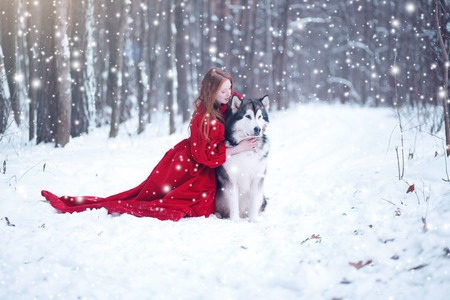 huskies: Woman on red dress with dogs. Fairy tale girl with Huskies or Malamute. Christmas. Stock Photo