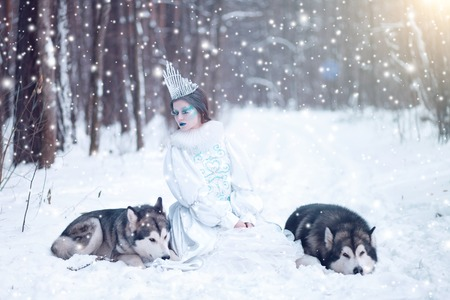huskies: Snow queen in winter. Fairy tale girl with Huskies or Malamute. Beautiful snow queen witn dogs. Stock Photo