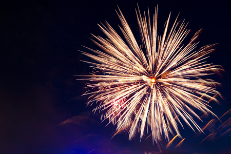 pyrotechnics: Brightly colorful fireworks and salute of various colors in the night sky. Independence Day, 4th of July, Fourth of July or New Year.