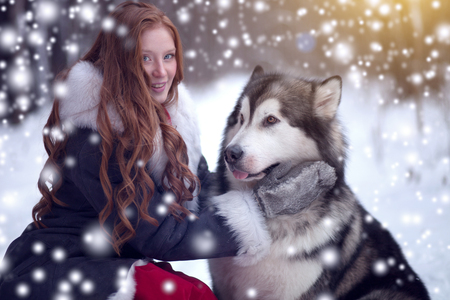The woman in grey coat with a dog or wolf. Fairy tale. Snowfall. Christmas. Stok Fotoğraf