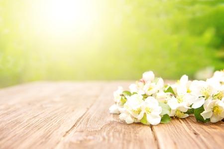 Lente bloemen van bloeiende appelboom takken op rustieke houten tafel over groene tuin. Zonnestraal.