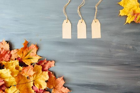 Colorful leaves with three tags on gray wood table background with copy space. View from above. Top view. Copy space for text and design