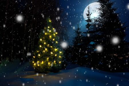 Christmas tree with christmas lights outdoor in the moonlight Banque d'images