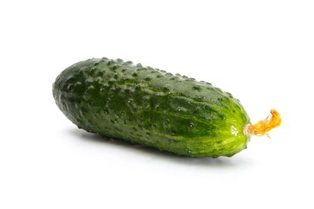 Delicious fresh cucumber isolated on a white background.