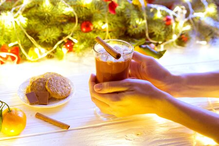 Girl drinks hot chocolate mug, with christmas branch of fir tree on rustic table with blanket. Reklamní fotografie