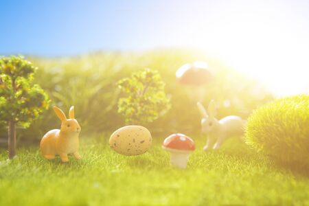 Easter eggs and rabbits. Holiday nature concept with easter hunt. The eggs in the sunny meadow.