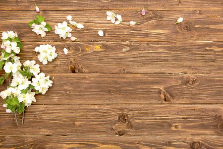 Spring flowers of blossoming apple tree branches on rustic wooden background. Top view.