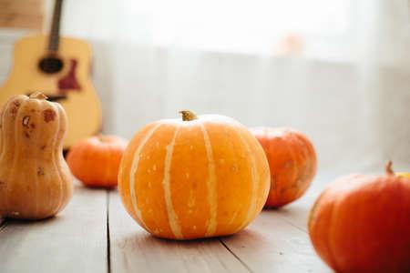 Pumpkins on the floor in the room 版權商用圖片