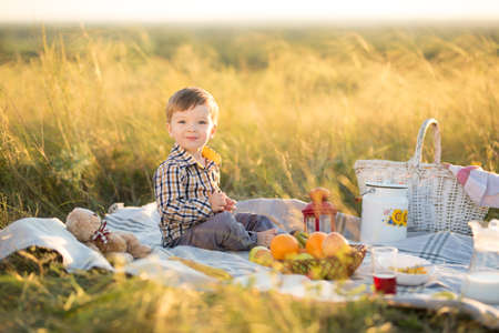 Great time is childhood. Boy kid with Teddy bear and fruit on a picnic in sunny day