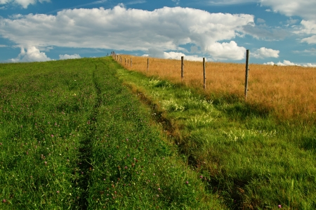 A trip around the wooden fence between the field of flowering clover and meadow with a dry grass photo