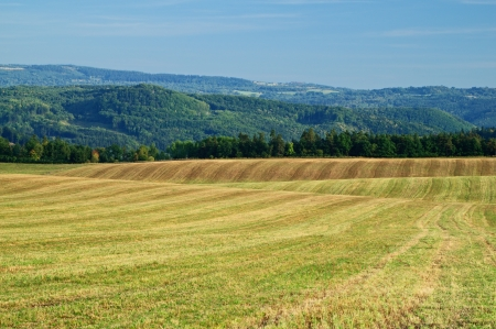 afield: Harvested fields, rolling terrain, stubble, in the background forest and forested mountain Stock Photo