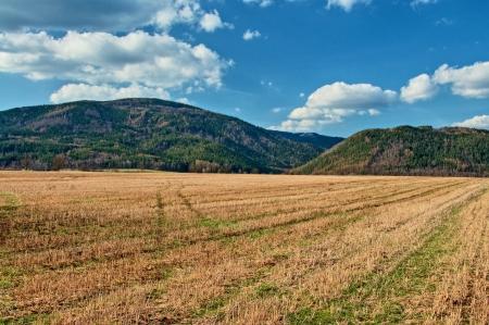 perspectiva lineal: Campos de rastrojo primavera con monta�as boscosas en el fondo, roderas en rastrojo, crear l�neas de perspectiva lineal Foto de archivo