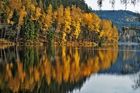 Trees with autumn leaves gold mirror above the surface of the pond, wooded mountains in the background photo