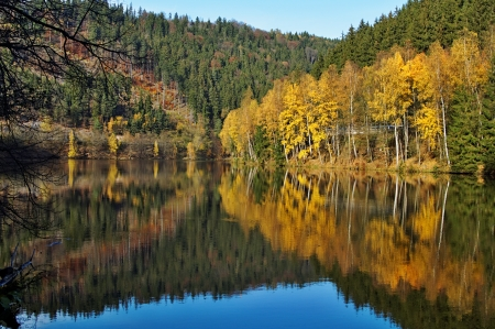 water level: Trees with autumn leaves gold mirror above the surface of the pond, wooded mountains in the background