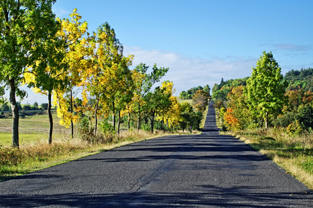 Asphalt road among trees with leaves in autumn colors, number of trees casting shadows on the series of asphalt road surface, azure sky with clouds photo