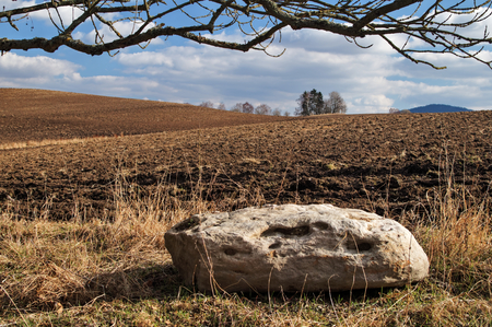 afield: Big round white stone next to the undulating plowed field in early spring, a group of trees on the horizon, leafless branches lining the upper rim, white clouds in the blue sky
