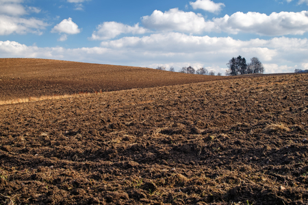 afield: Undulating plowed field in early spring, a group of trees on the horizon, white clouds in the blue sky