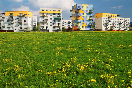 coloration: Spring on the housing estate, blooming meadow in front of prefabricated houses, colorful facades