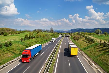 복도 고속도로와 동물, 고속도로 타고 컬러와 흰색 트럭, 백그라운드에서 도시와 숲이 우거진 된 산, 위에서 볼 스톡 콘텐츠