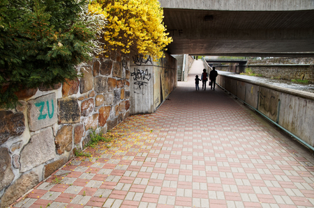 stone steps: The paved walkway that runs along the waterfront along the river. Silhouettes of pedestrians walking under the bridge. Flowering shrubs over a stone wall.