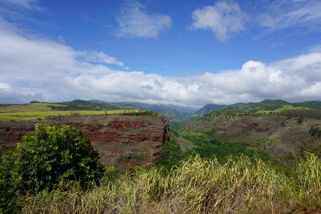 View of the southern end of the Waimea Canyon looking north