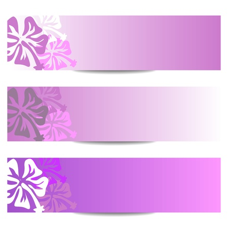 floral banner with HIBISCUS flower in purple