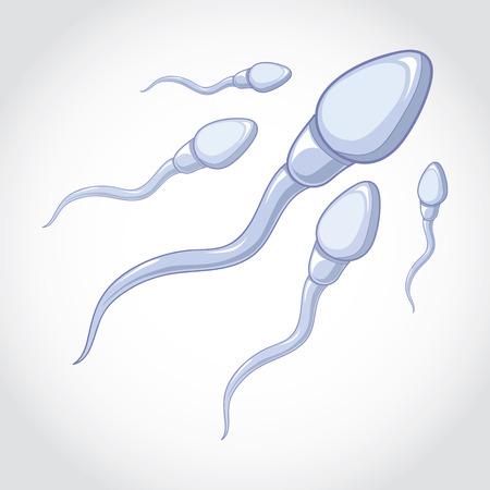 espermatozoides: espermatozoides de ejecución a un óvulo. Vectores