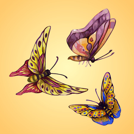 painterly effect: picture of three color butterflies from watercolor style isolated on light background