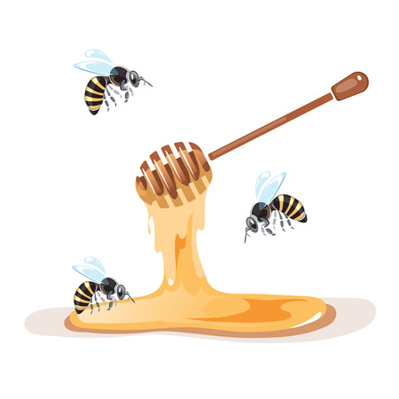 apiary: Apiary vector illustrations. Apiary pictures set with bee and honey. Apiary symbols isolate on white background