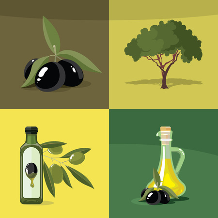 italian tradition: vector illustrations set of Olives, tree, oil botles and leaf isolated on four diferent color backgrounds. Pictures for your personal design project.