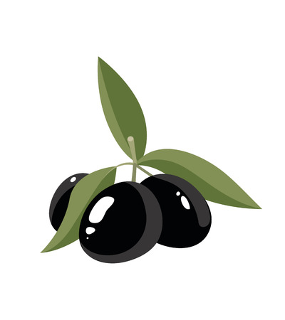 vector illustration of three black Olives with leafs isolate on light background. Pictures for your personal design project. Illustration