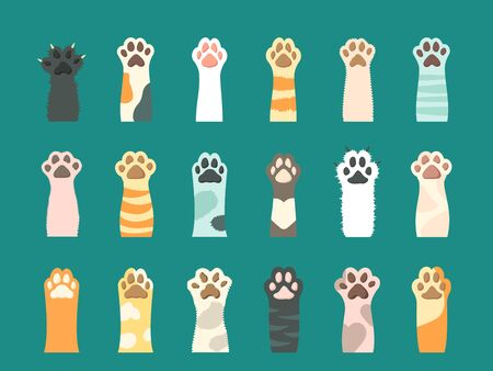 Cat paw with claw set. Fluffy colored cat s paw, black, pink, white, striped, spotty, yellow, orange with or without claws, cute and contented paws domestic kitten. Vector graphic in a flat style.